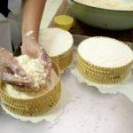 Der frische Käse wird gesalzen und in Formen gepresst. (Foto: Florian Kopp/SMMP)